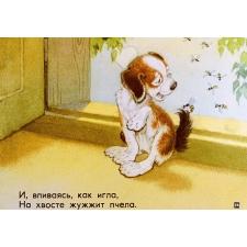 Щенок. Диафильм с рисунками Петра Репкина