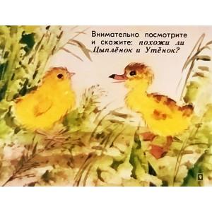 НОВИНКА. Цыпленок и утенок